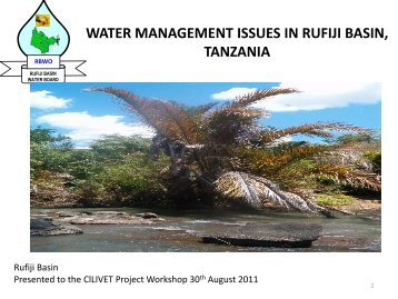 water management issues in great ruaha catchment, tanzania - Geus