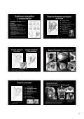 Procesos orbitarios - Geyseco - Page 2