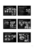 Procesos orbitarios - Geyseco - Page 6