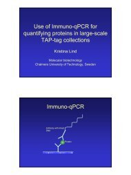 Use of Immuno-qPCR for quantifying proteins in large-scale TAP-tag ...