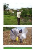 Laikipia Elephant Project Working Papers - University of Cambridge ... - Page 7
