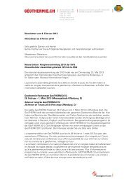 Newsletter vom 8. Februar 2013 Newsletter du 8 ... - Geothermie