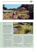 Gemeinde Planegg - Seite 3
