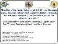 Modeling of the chaotic behavior of Sidi El Hani discharge playa ...