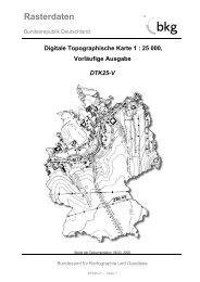Digitale Topographische Karte 1
