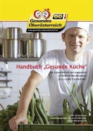 Handbuch Gesunde Küche - Netzwerk Gesunde Gemeinde - Land ...