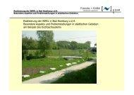 Realisierung der WRRL in Bad Homburg v.d.H. Besondere Aspekte ...