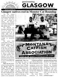 Glasgow natives reel in Monster Cat Roundup - Glasgow Montana