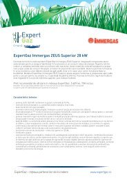 ExpertGaz Immergas ZEUS Superior 28