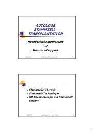 Autologe Stammzelltransplantation