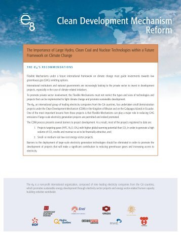 June 2007 PDF - 2 pages - Global Sustainable Electricity Partnership