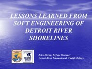lessons learned from soft engineering of detroit river shorelines