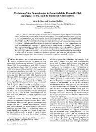 Evolution of Sex Determination in Caenorhabditis ... - Genetics
