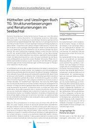 Strukturverbesserungen und Renaturierungen im Seebachtal