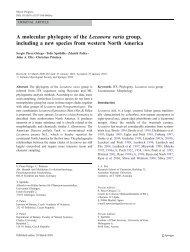 A molecular phylogeny of the Lecanora varia group, including a new ...