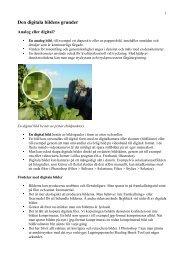 Den digitala bildens grunder