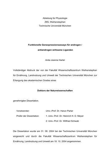 thesis in computer