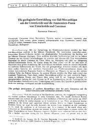 Die geologische Entwicklung von Süd-Mozambique seit der ...