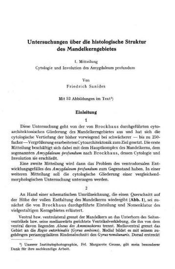 Untersuchungen über die histologische Struktur ... - The Human Brain