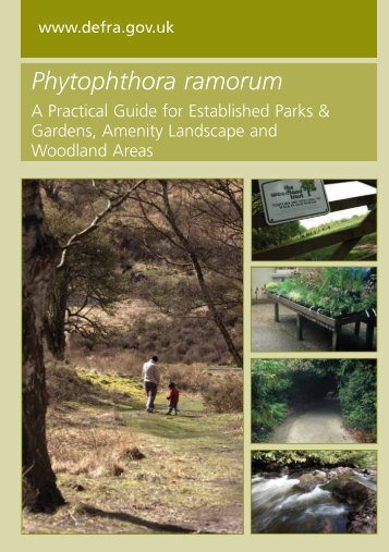 Phytophthora ramorum - The Food and Environment Research ...