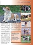 September - Naturheilkunde & Gesundheit - Seite 7