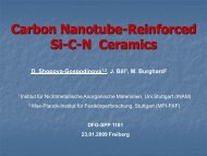 Carbon Nanotube-Reinforced Precursor-Derived Ceramics - nanomat