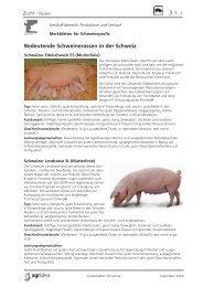 03 Datenblätter Schweine Zucht.indd - agrigate.ch