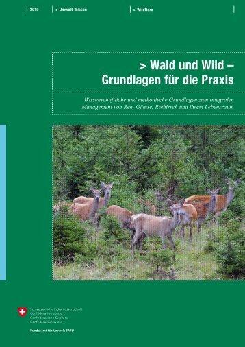 Wald und Wild – Grundlagen für die Praxis