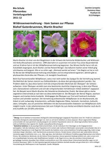 Wildrosenvermehrung - Vom Samen zur Pflanze ... - Bio-Schule.ch