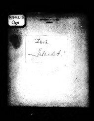 Gelandet [microform] : ein dramtisches Gedicht, 1916-1917