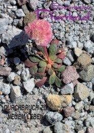 Pfarrbrief April 2009.pmd - Gemeinde Schlierbach