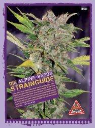 THCene: Strains - Alpine Seeds