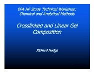 Crosslinked and Linear Gel Composition (PDF)
