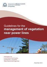Guidelines for the management of vegetation near power lines