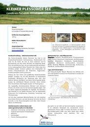 KLEINER PLESSOWER SEE - NABU-Stiftung Nationales Naturerbe
