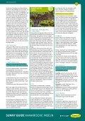 Reiseführer als PDF - Sunny Cars - Seite 4