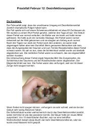 Praxisfall Februar 12 Desinfektionspanne.pdf - AG für Tiergesundheit