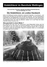 Holzköhlerei im Bannholz Wettingen - Pilzverein Region Baden
