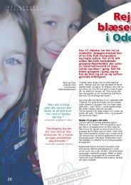 Broen nr. 1, 2007, side 26-27 - DDS.dk