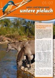 Pielach-Zeitschrift herunterladen