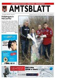 3. Ausgabe 18.3.13 - Eisenstadt