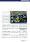 Villa Spiegelberg: Nach der Klausur in den Wein-Circus - Hans Bürkle - Seite 3