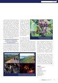 Villa Spiegelberg: Nach der Klausur in den Wein-Circus - Hans Bürkle - Seite 5