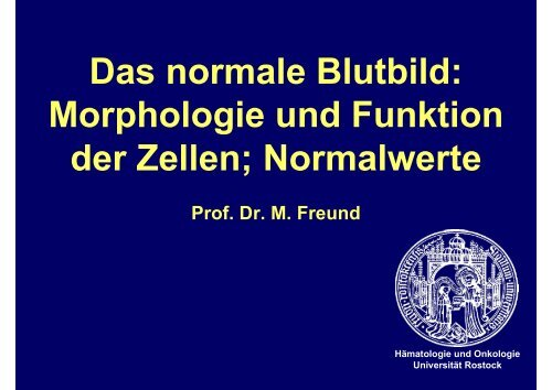 Das normale Blutbild - Hämatologie und Onkologie Rostock