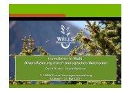 Investieren in Wald: Diversifizierung durch biologisches Wachstum ...