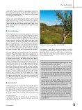 Download - VCP Verband christlicher Pfadfinderinnen und Pfadfinder - Seite 5