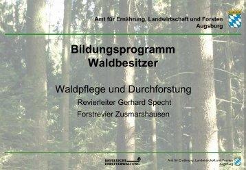 Geschichte der Holzernte - Amt für Ernährung, Landwirtschaft und ...