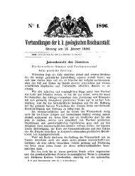 k_k_jahresbericht_1895.pdf