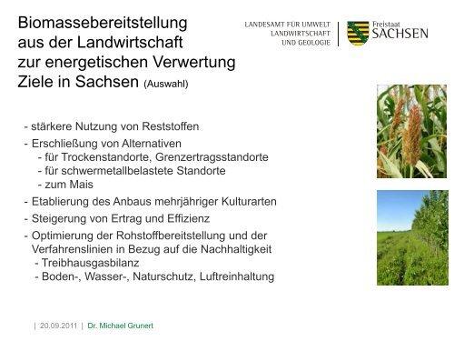 Bioenergie im Freistaat Sachsen