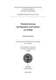 Charakterisierung der Regulation und Funktion von PPARβ